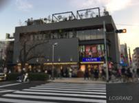 ついに桜新町にオープンしたカルディとハガレ。レジには行列もできています。